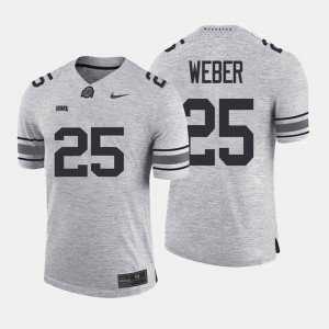 #25 Mike Weber Ohio State Buckeyes Gridiron Gray Limited Men's Gridiron Limited Jersey - Gray
